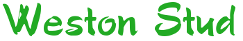 www.westonstud.co.uk Logo